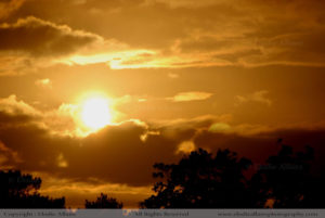 SUNSET Elodie Allaire Photography